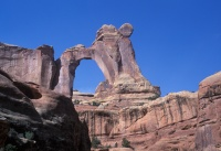 031:  Angel Arch is the goal of a day hike up from Salt Creek Canyon.