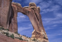 032:  Most hikers stop here for this wonderful view of Angel Arch, well below the formation.  The UCMC, however....